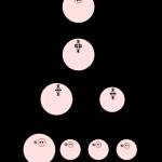 Los gemelos semi idénticos o gemelos de cuerpos polares