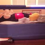 Probamos la barrera de cama con luz Side Light de Babyhome