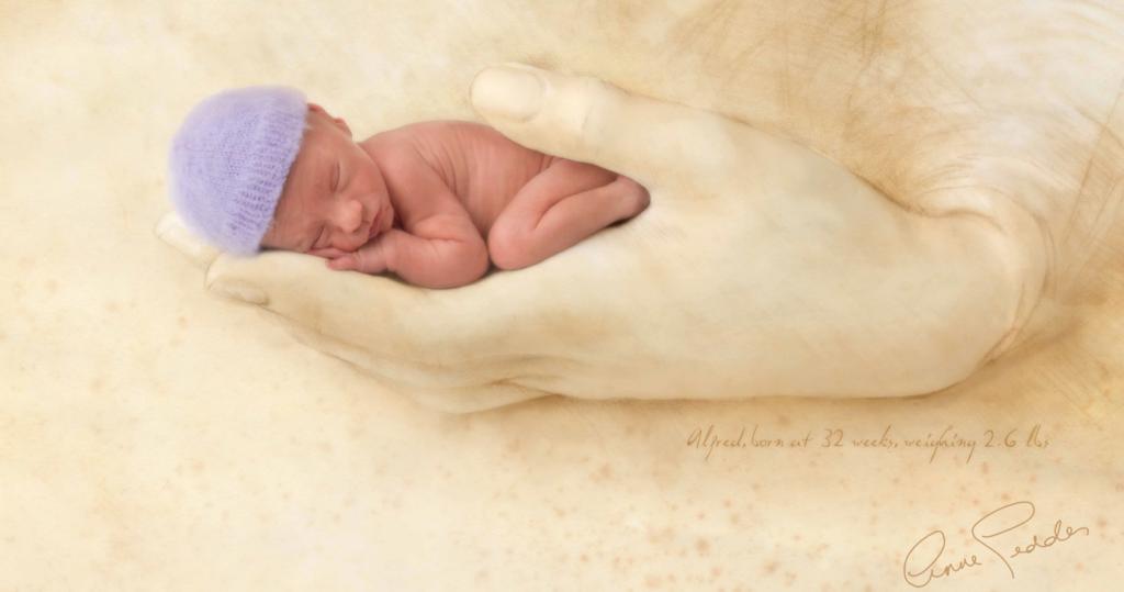 6cb329257 Un bebé prematuro visto a través de los ojos de la magnífica fotógrafa Ann  Geddes