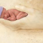 Un bebé prematuro visto a través de los ojos de la magnífica fotógrafa Ann Geddes
