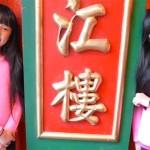 Un estudio sobre gemelos chinos adoptados por separado