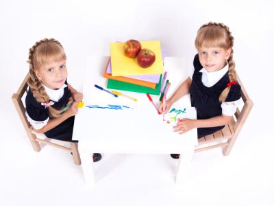 ¿Nos pueden imponer separar a los gemelos y mellizos en el colegio?